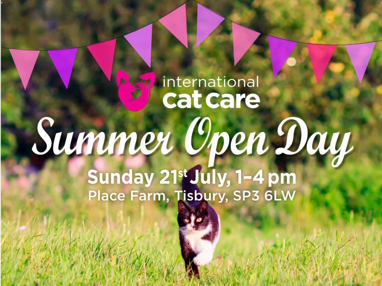 International Cat Care Open Day